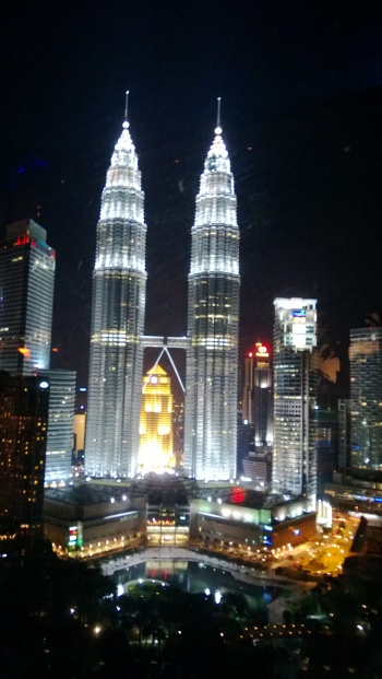 View of the Petronas Towers at night.
