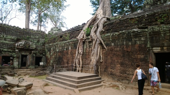 Ta Phrom temple with giant tree roots growing in and over the temple walls