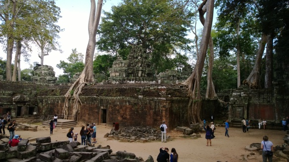 Ta Phrom temple with more tree roots growing over and through the walls