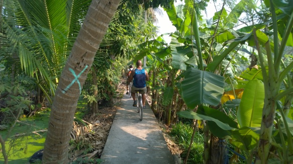 Riding through coconut trees and banana plants